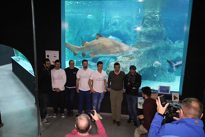 Equipo School of Sharks y Aquarium