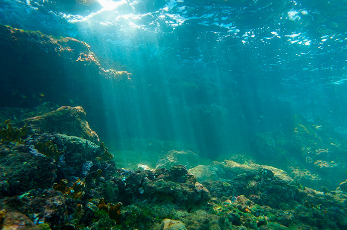 Significado de fondo marino
