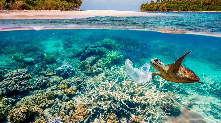 Consejos para cuidar el mar y el medio ambiente