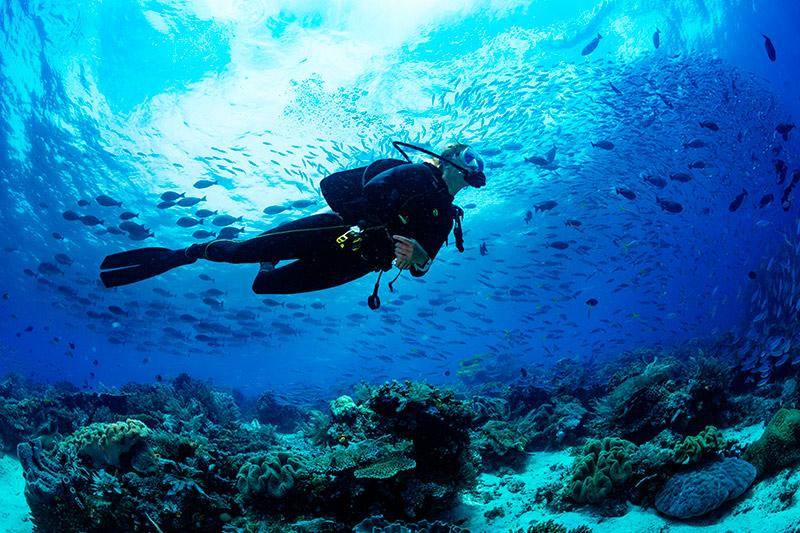 Cuidar el mar