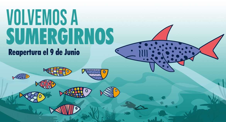 Aquarium vuelve a abrir sus puertas el 9 de junio