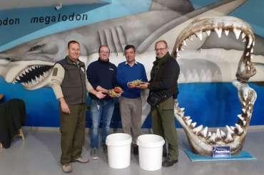 Aquarium Costa de Almería, comprometido con la protección de la fauna marina